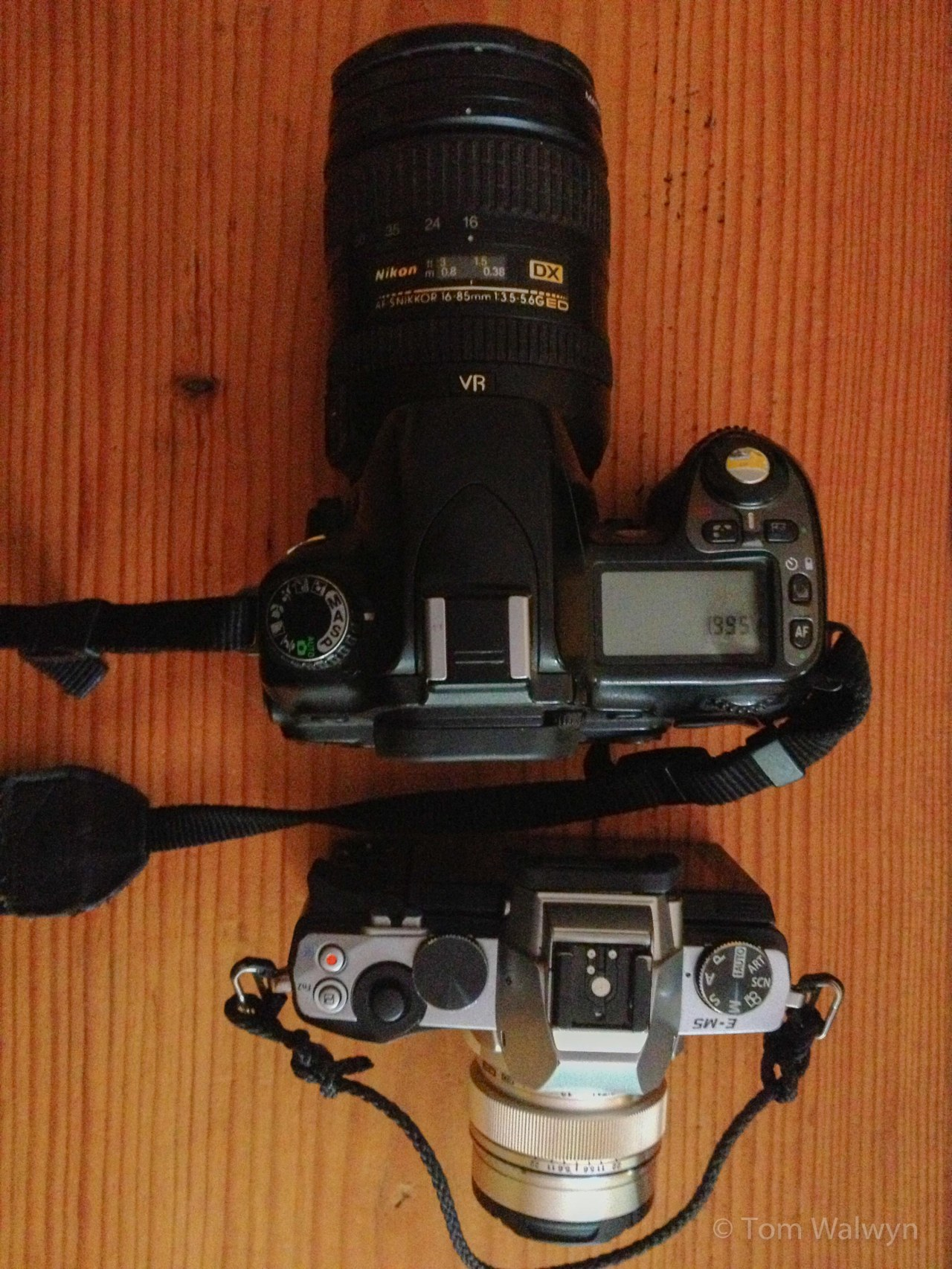 David and Goliath - the Nikon D80/16-85mm vs the Olympus OM-D EM-5/12mm